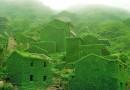 زمین سبزتر شده اما خوشحال نباشید
